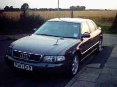 Cruiser's Audis